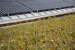 Photo of WaterShed's solar panel roof and green roof