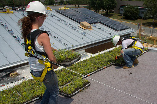 Photo of Veronika Zhiteneva Installing Green Roof
